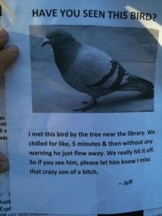 The Most Ridiculous But Awesome Flyers Ever Posted