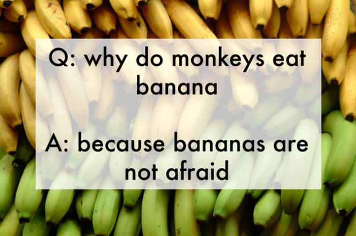 Funny Jokes That Were Made Up by Kids