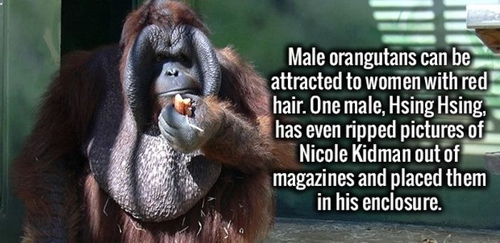 The Most Fun Facts You're Going To Learn Today