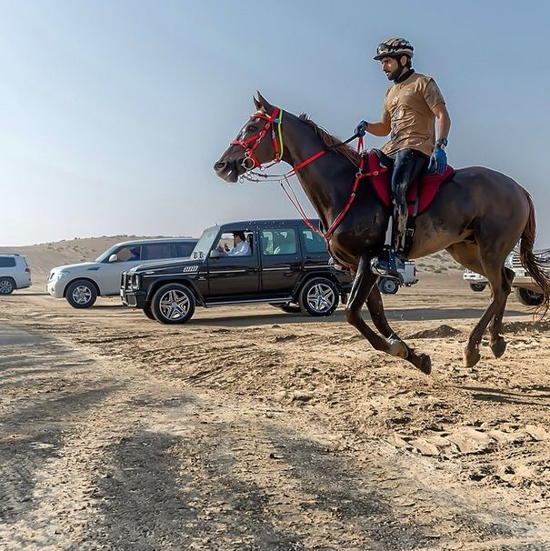 The Exciting Life Of Hamdan Bin Mohammed
