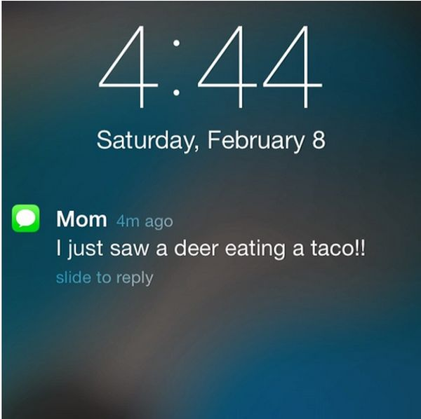 These Texts Are Guaranteed To Make You Laugh