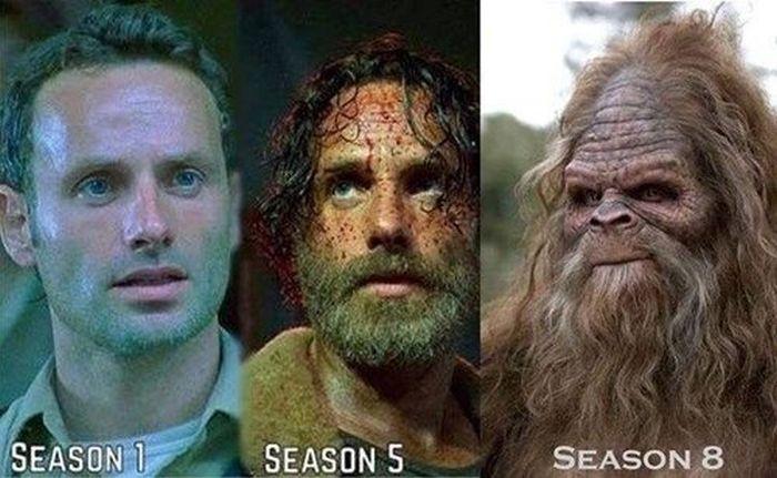 The Best 'Walking Dead' Memes From Season 5, part 5