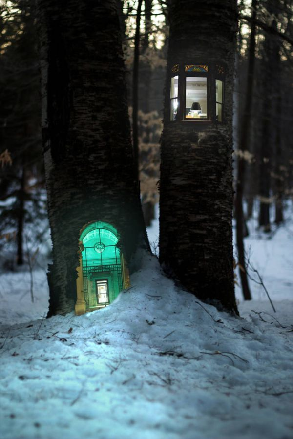 These Magical Forest Photos Make Treehouses Look Way Cooler