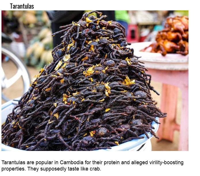 Just Because You Can Eat These 15 Insects Doesn't Mean You Should