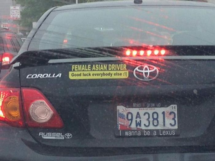 Funny And Random Bumper Stickers