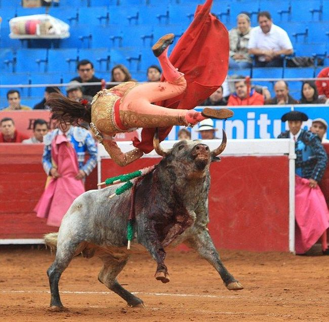 Female Bullfighter Gets Gored By Bull