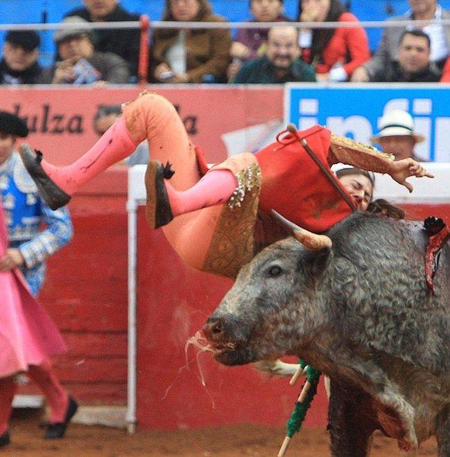 Female Bullfighter Gets Gored By Bull