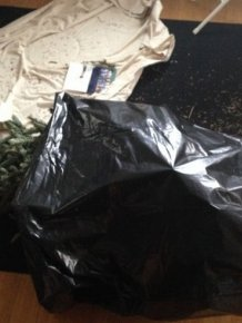 Best Christmas Tree Disposal Prank