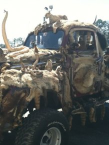 This Entire Truck Is Covered With Dead Animals