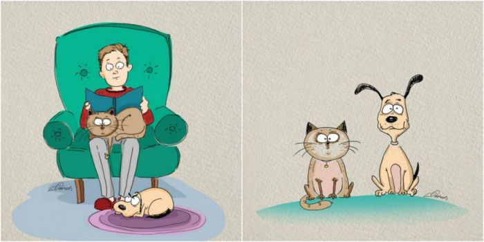 The Differences Between Living With Cats And Dogs