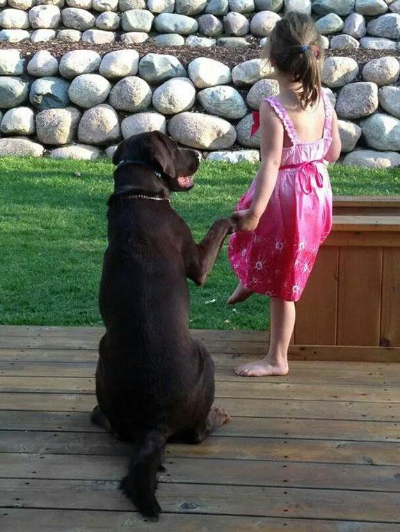 Man's Best Friend, part 9