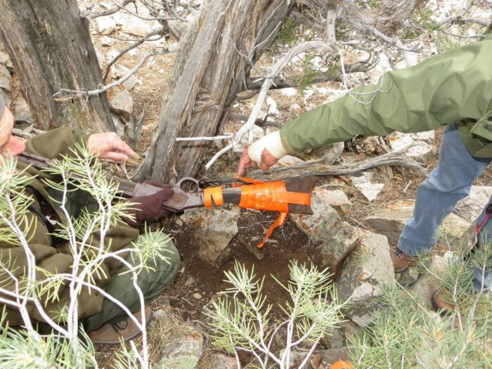 Mysterious Old Winchester Rifle Found In Nevada Park