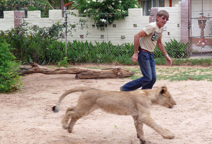 This Man And Lion Have Been Friends For 11 Years