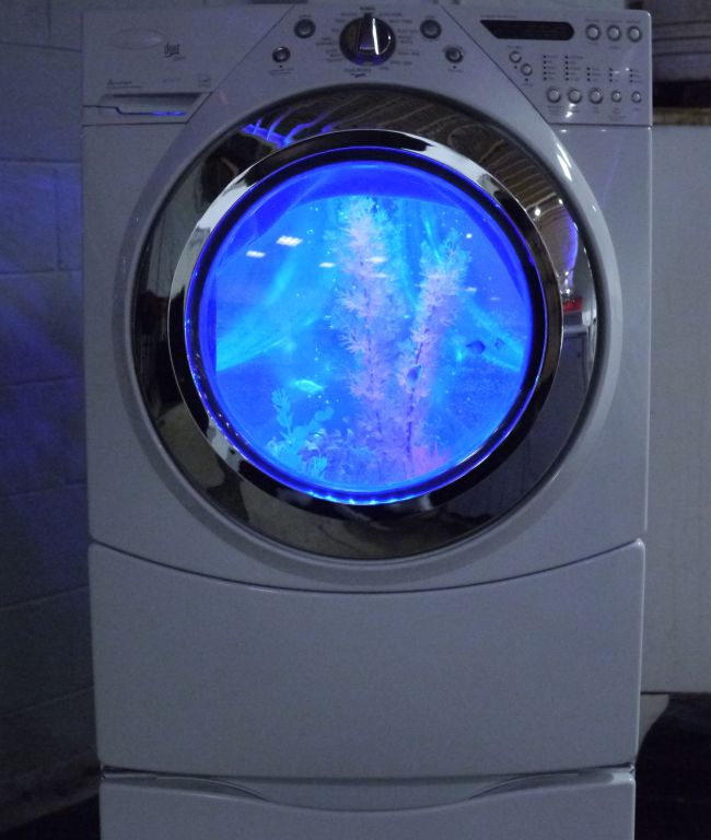 How to Turn a Broken Washing Machine Into An Aquarioum