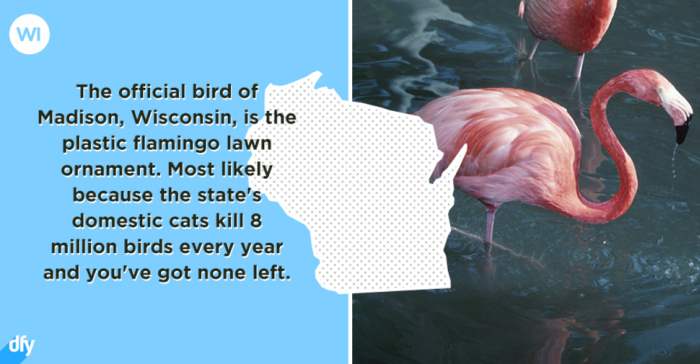 Embarrassing Facts About Each U.S. State