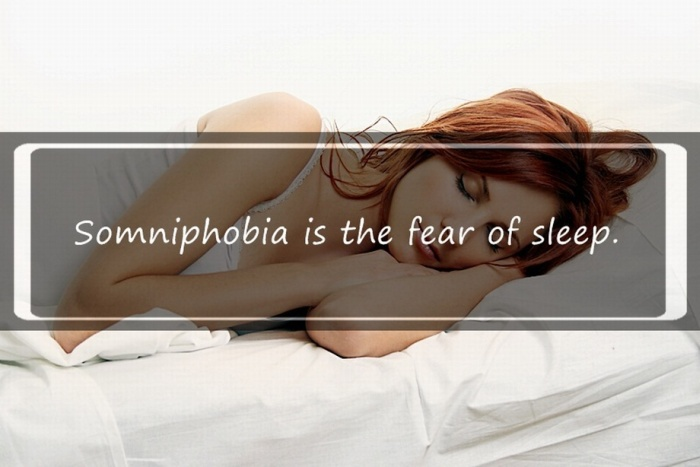 Interesting Facts You Might Not Know About Sleeping