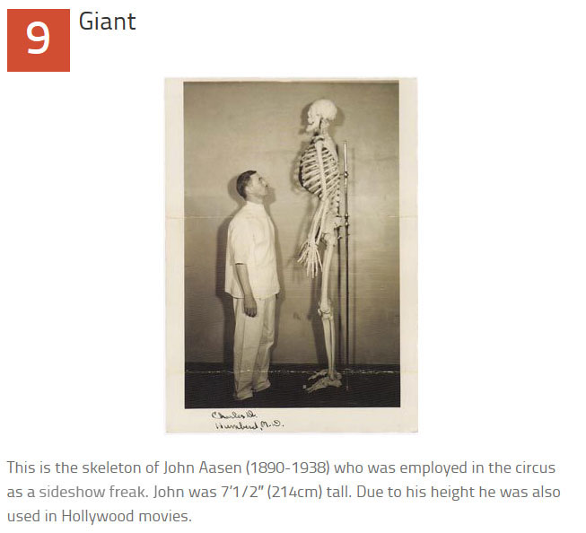 10 Disturbing Medical Images Throughout History