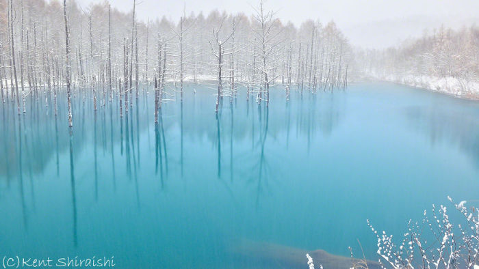 This Pond Changes Colors With The Seasons