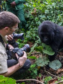 See The Exact Moment A Gorilla Punched This Photographer