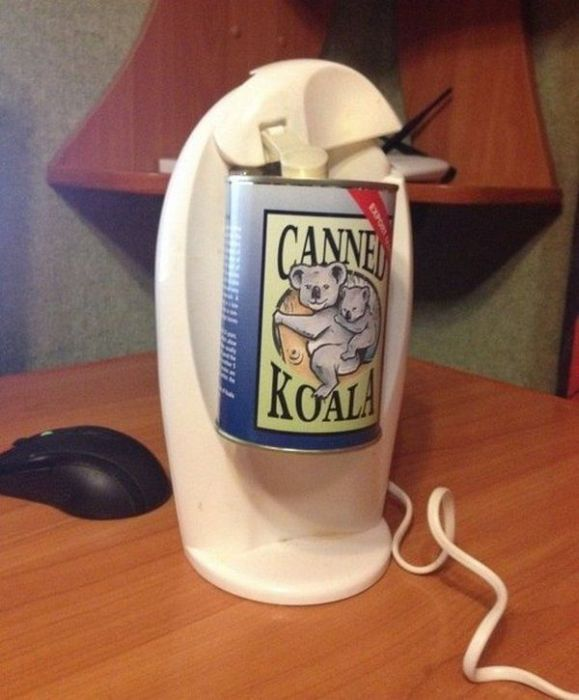 This Is What A Canned Koala Looks Like