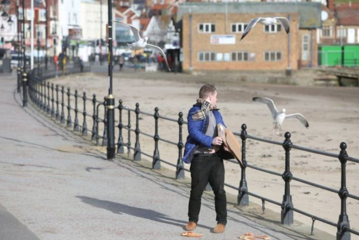 A Gust Of Wind And A Flock Of Seagulls Stole This Man's Pizza