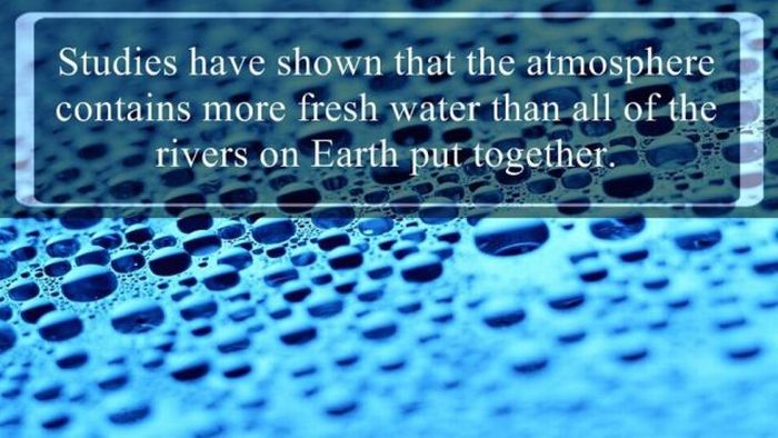 Here Are Some Important Facts About Water That You Need To Know