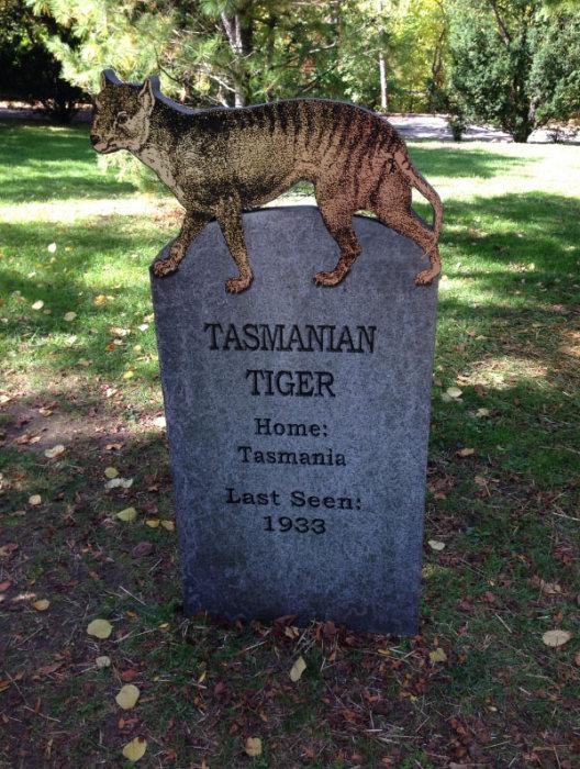 This New York Graveyard Is Dedicated To Extinct Animals