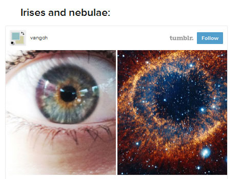 These 19 Beautiful Images Compare The Body And The Universe