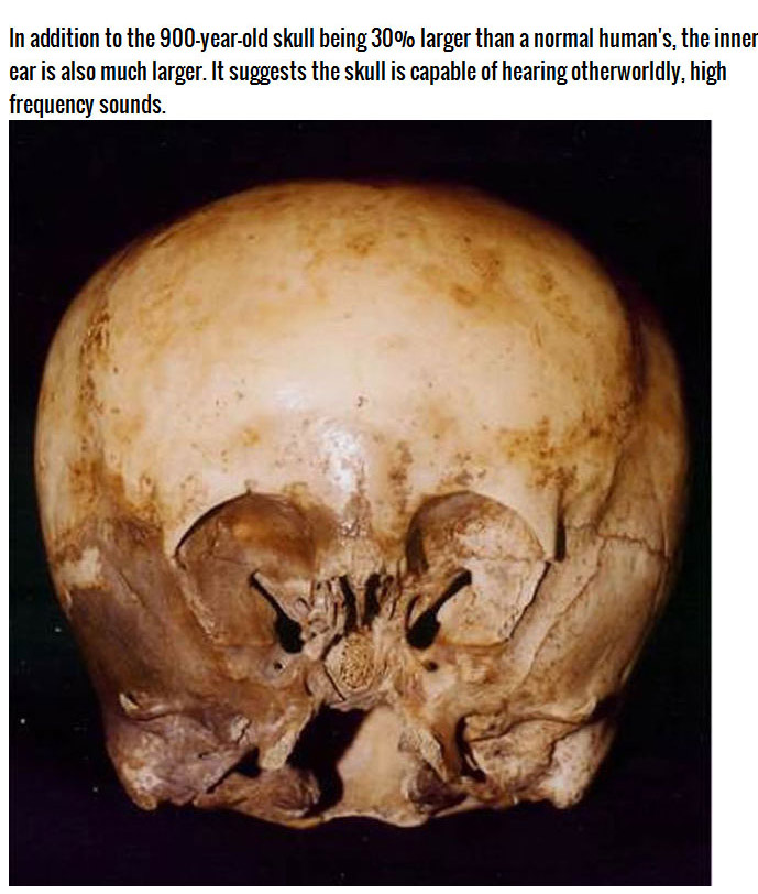 What Is This Mysterious Skull?
