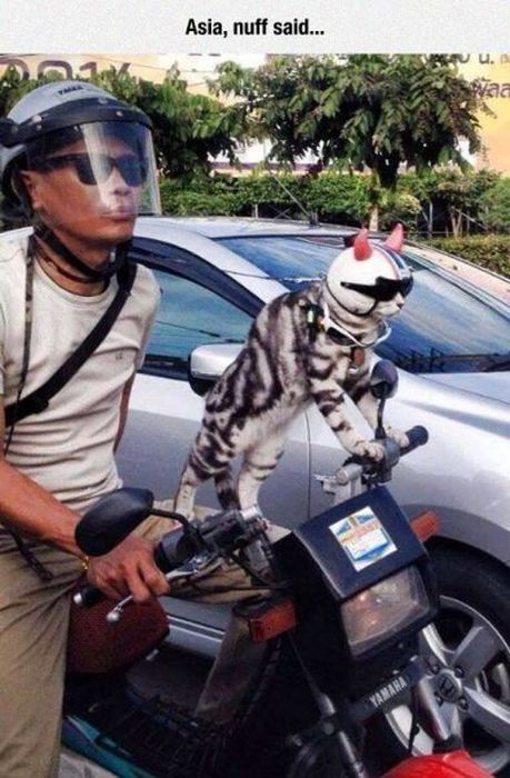 Unusual Sights You Definitely Don't See Everyday
