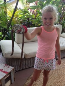 Australia Has Earthworms The Size Of Snakes