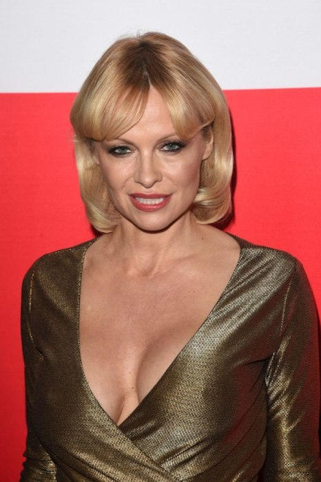 Pamela Anderson Recently Hit The Red Carpet And She Looks Stunning