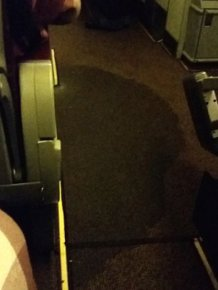 Plane Gets Flooded With Urine After The Toilets Overflow