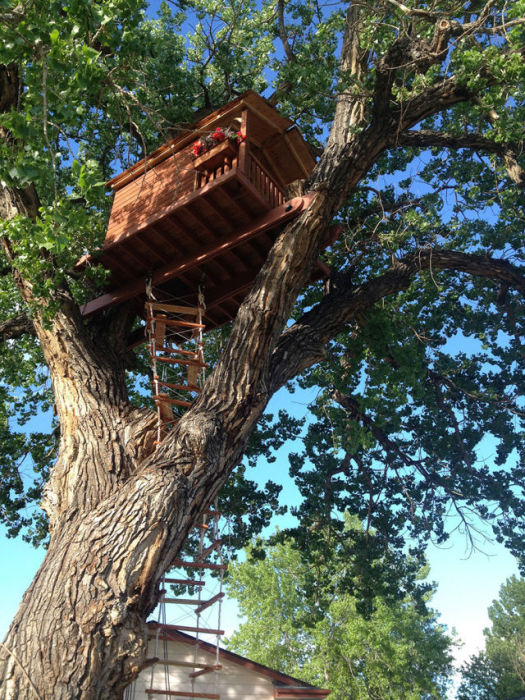 His Daughter Wanted A Tree House So He Went All Out