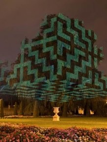 Javier Riera Is Turning Trees Into Surreal Art