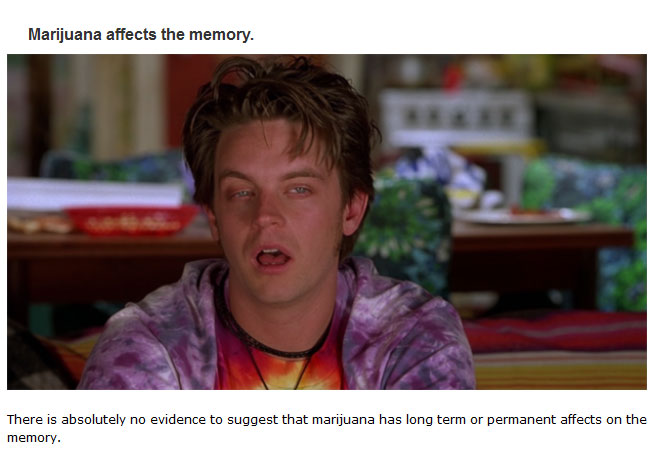 Myths People Believe About Weed That Just Aren't True