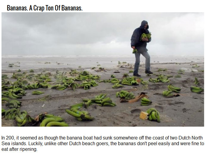 Bizarre Things Washed Ashore