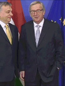 Moments That Could Win An Award For Being Awkward