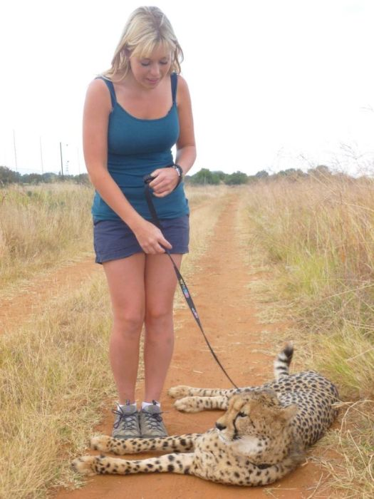 This Girl Is A Real Life Cheetah Whisperer