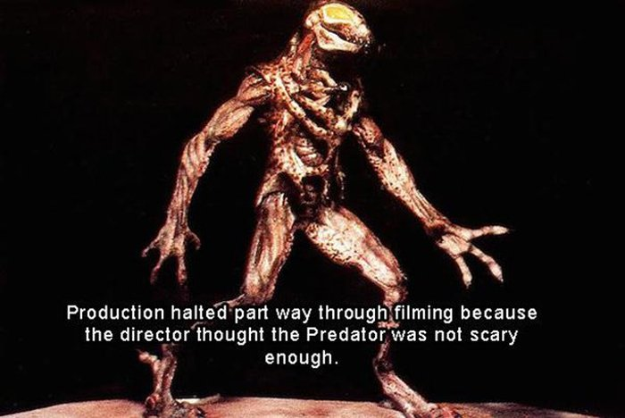 Fun And Interesting Facts About The Movie Predator