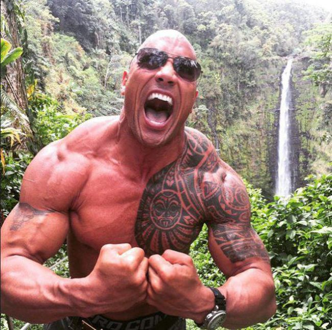 The Rock's Insane Diet Has Him Eating 10 Pounds Of Food A Day