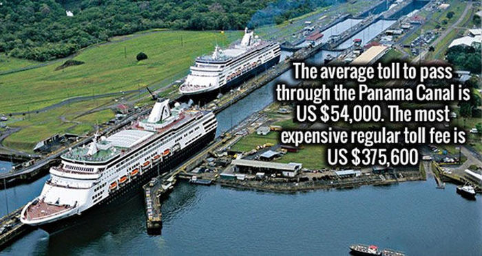 Impress Your Friends And Family With These Interesting Facts