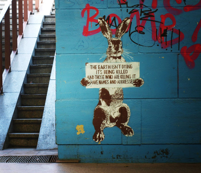 Powerful Street Art Pieces With A Message