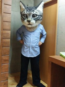This Giant Wool Cat Head Is A Nightmare Come True