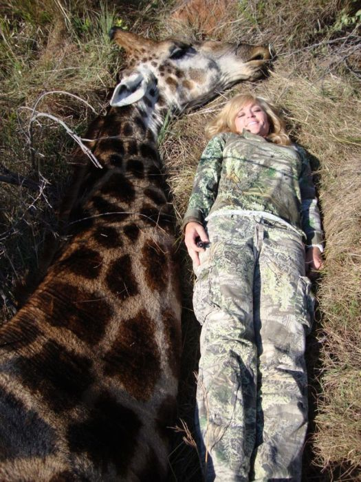 A Hunter Is Getting Death Threats After Taking A Photo A Dead Giraffe
