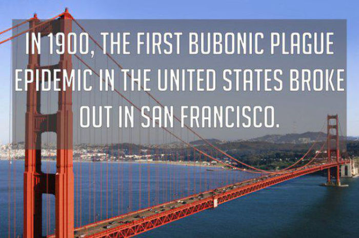 Bizarre But True Facts About The United States Of America