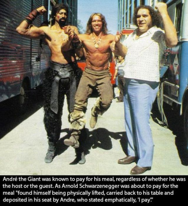 An Awesome Tribute To The Legendary Andre The Giant
