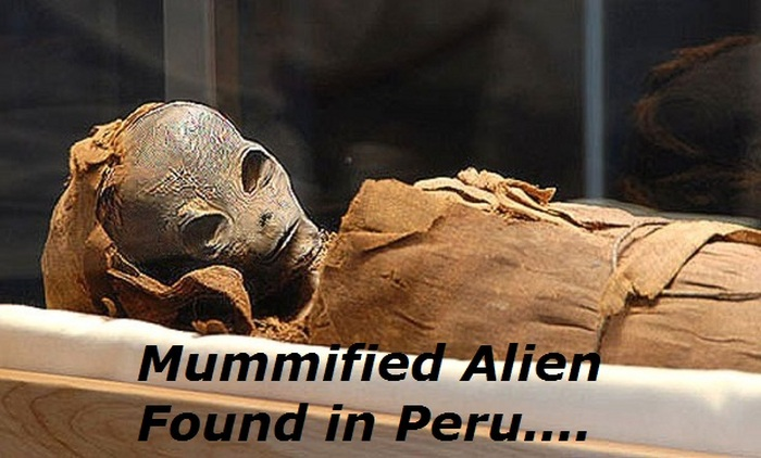 Are These Pictures Of Aliens Real Or Fake?