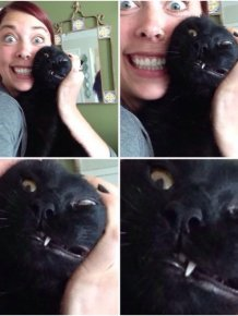 26 Moments Only Cat Owners Can Relate To