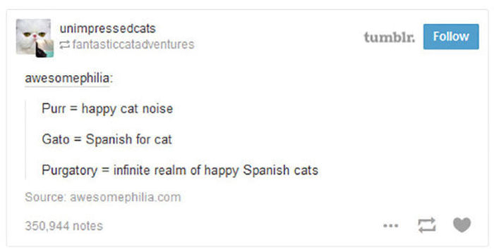 Proof That Tumblr Can Perfectly Sum Up Any Situation